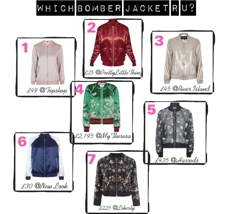 Which Bomber Jacket - Bagstowear
